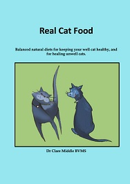 Real Cat Food by Clare Middle